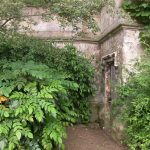 The way out of the garden