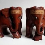 Indian cricket elephatns