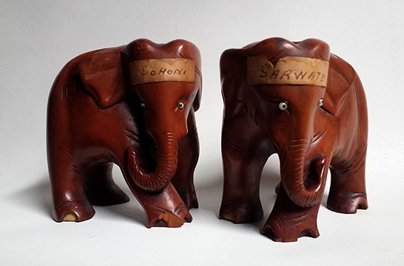 Indian cricket elephatns
